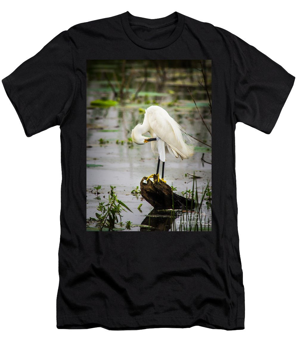Animal Men's T-Shirt (Athletic Fit) featuring the photograph Snowy Egret In Swamp by Robert Frederick