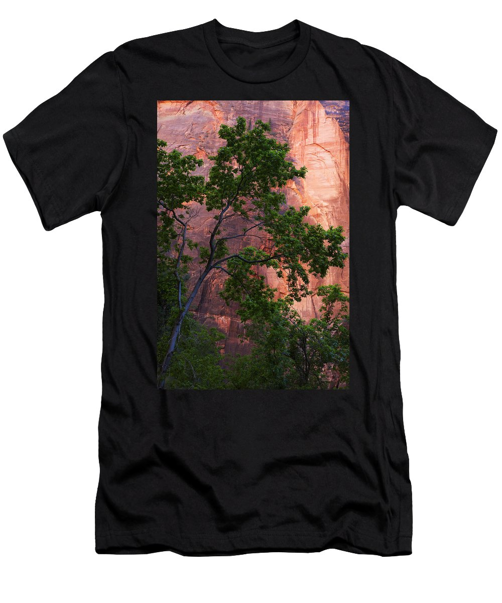 Canyon Men's T-Shirt (Athletic Fit) featuring the photograph So Zion 3 by Marilyn Hunt