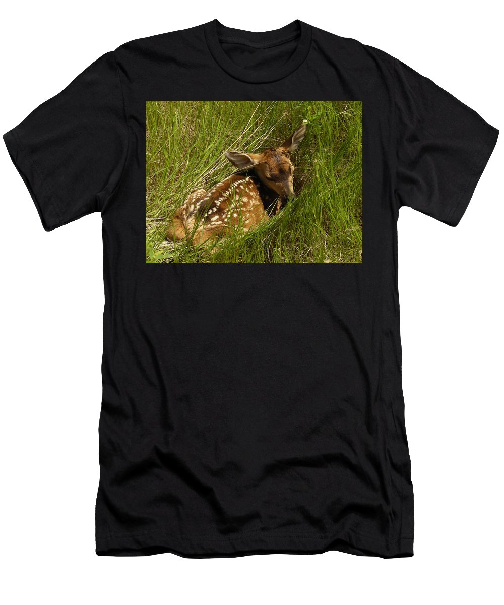 Fawn Men's T-Shirt (Athletic Fit) featuring the photograph Something I Stumbled On by Jeff Swan