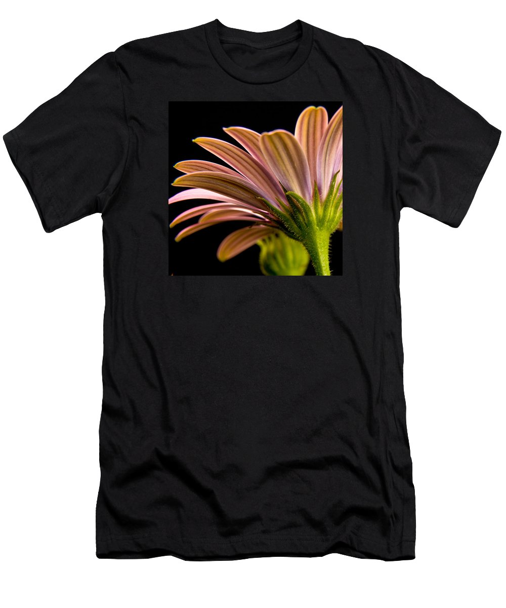 Soprano Daisy Men's T-Shirt (Athletic Fit) featuring the photograph Soprano Daisy by Roger Passman