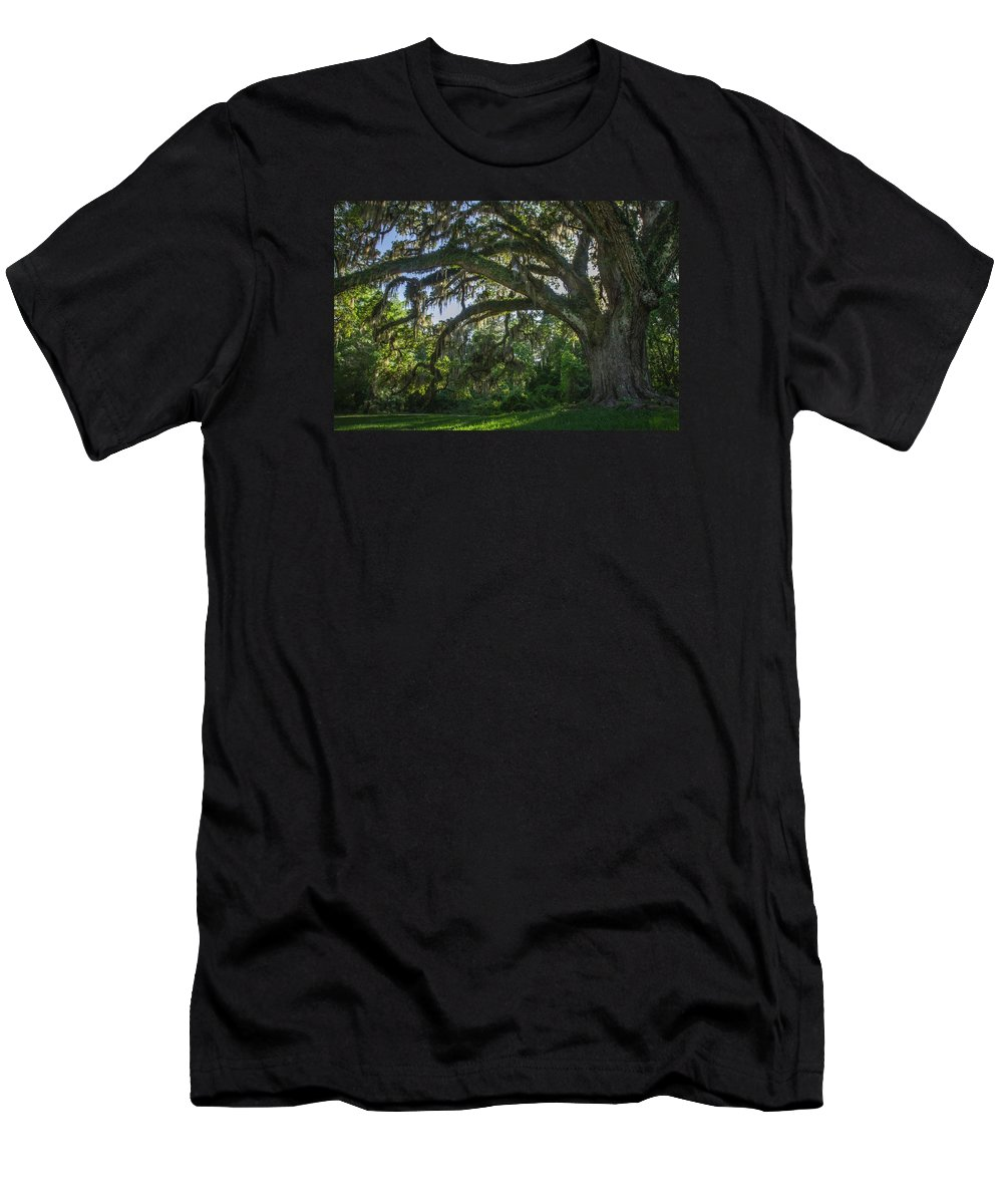 Oak Men's T-Shirt (Athletic Fit) featuring the photograph Southern Charm by Julie Andel