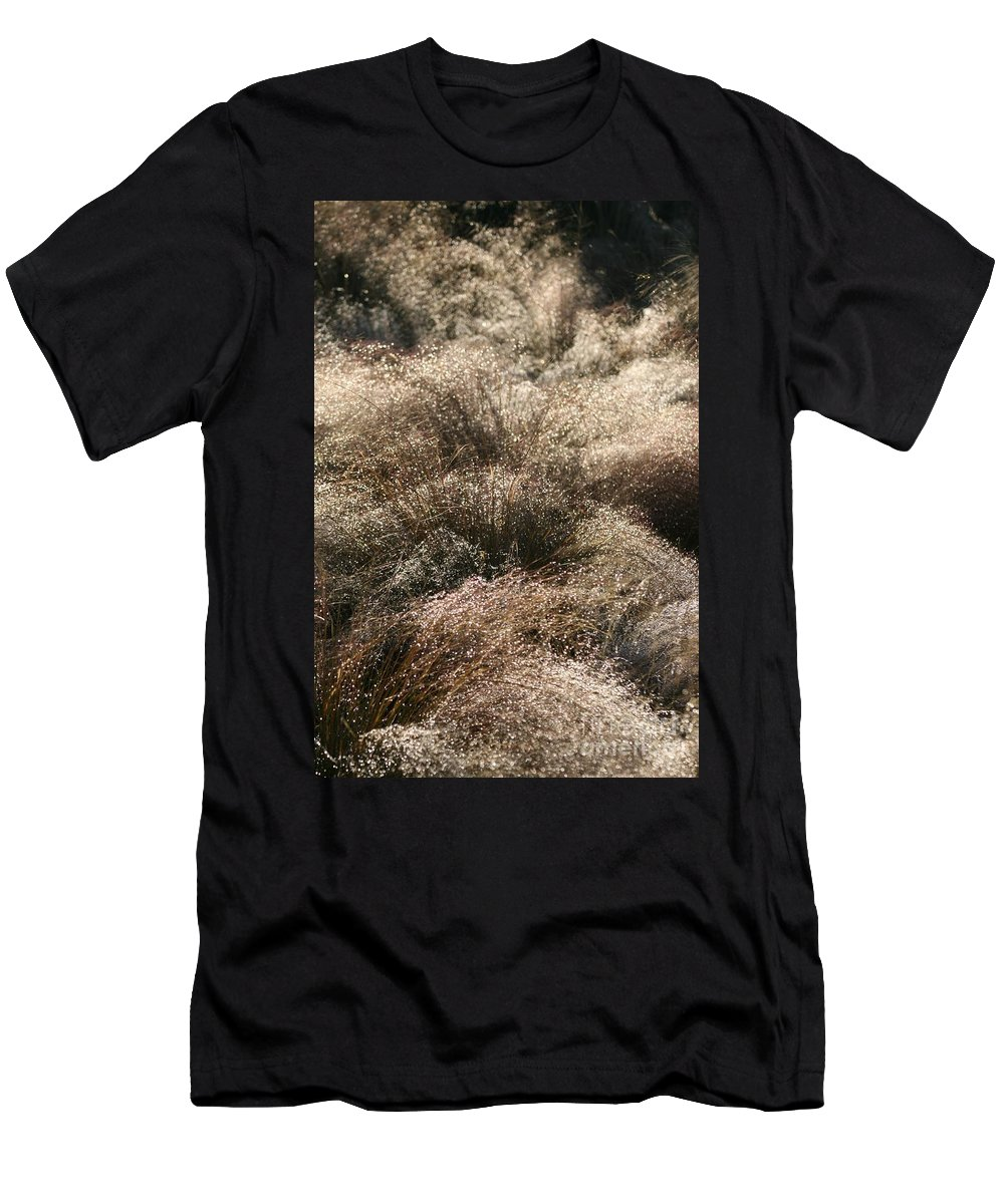 Grasses Men's T-Shirt (Athletic Fit) featuring the photograph Sparkling Grasses by Nadine Rippelmeyer
