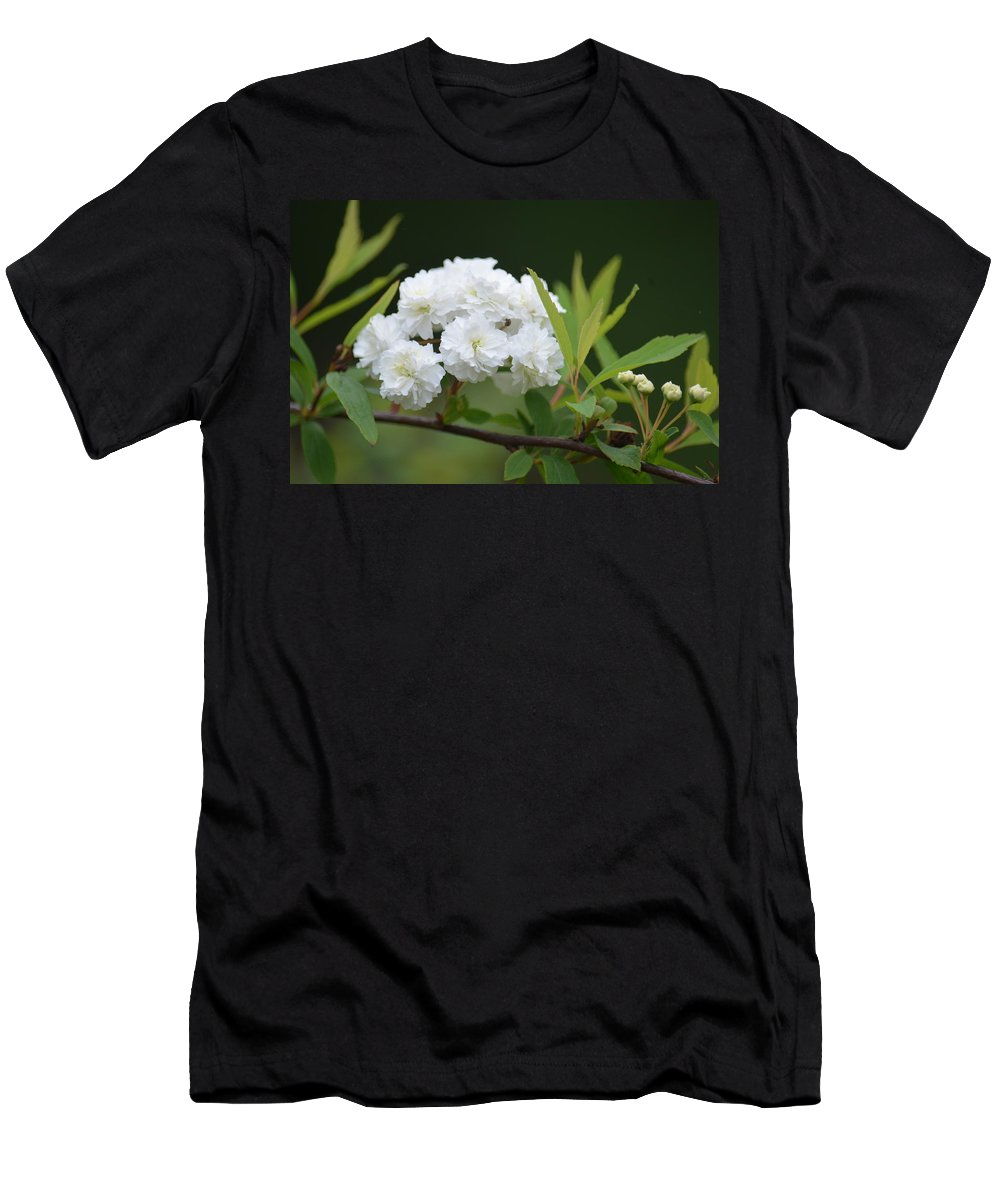 Spirea Blossom Men's T-Shirt (Athletic Fit) featuring the photograph Spirea Blossom by Maria Urso