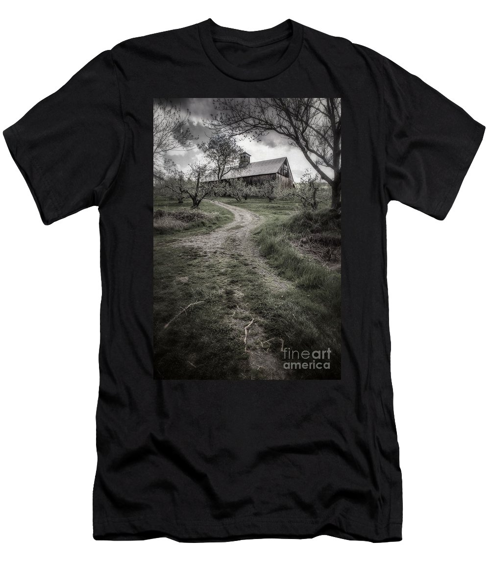 Apple Men's T-Shirt (Athletic Fit) featuring the photograph Spooky Apple Orchard by Edward Fielding