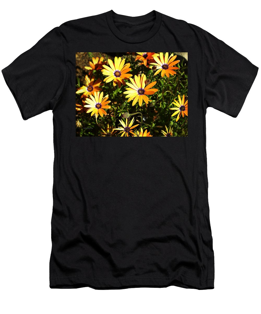 Arctotis Men's T-Shirt (Athletic Fit) featuring the photograph Spring Blossom 4 by Xueling Zou