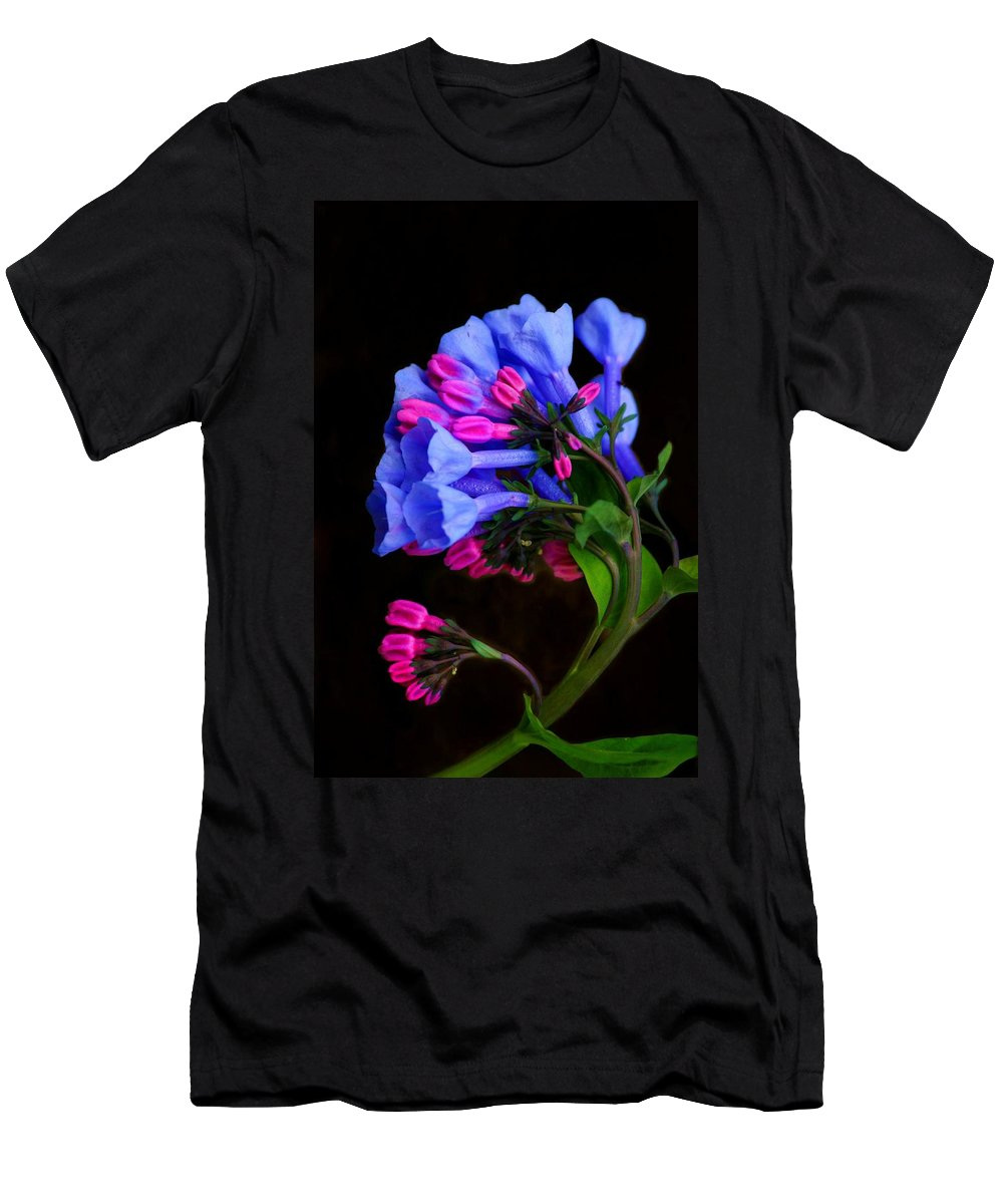 Flower Men's T-Shirt (Athletic Fit) featuring the photograph Spring Bluebells by John Absher
