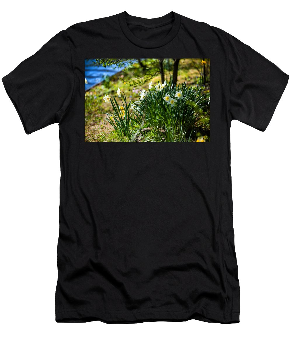 Spring Men's T-Shirt (Athletic Fit) featuring the photograph Spring Daffodils.park Keukenhof by Jenny Rainbow
