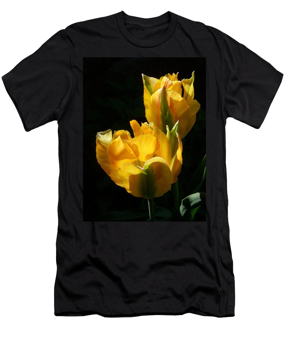 Tulips Men's T-Shirt (Athletic Fit) featuring the photograph Spring Gold by Terri Waselchuk