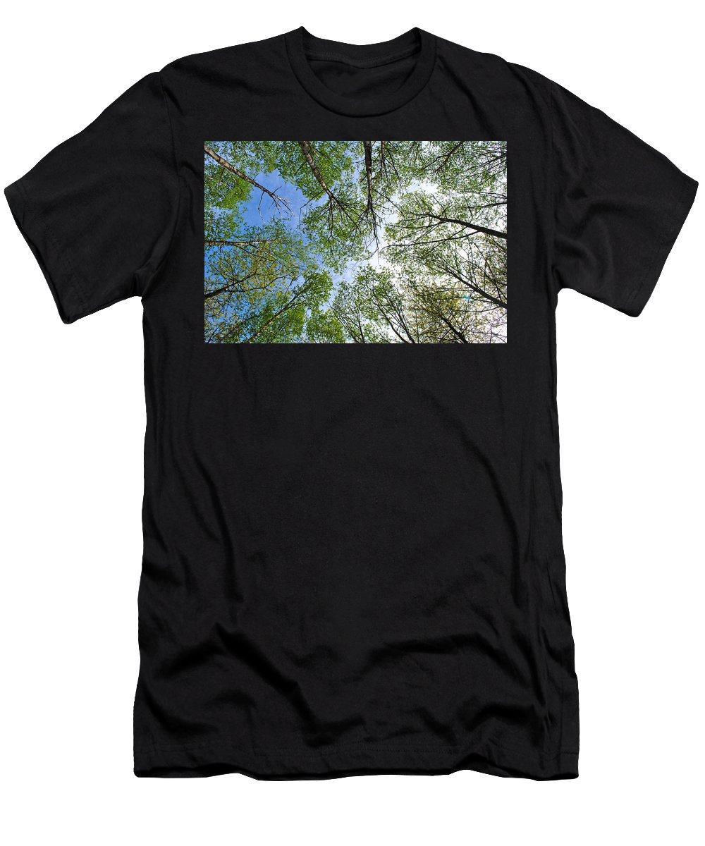 Trees Men's T-Shirt (Athletic Fit) featuring the photograph Spring Lace by Cathy Mahnke