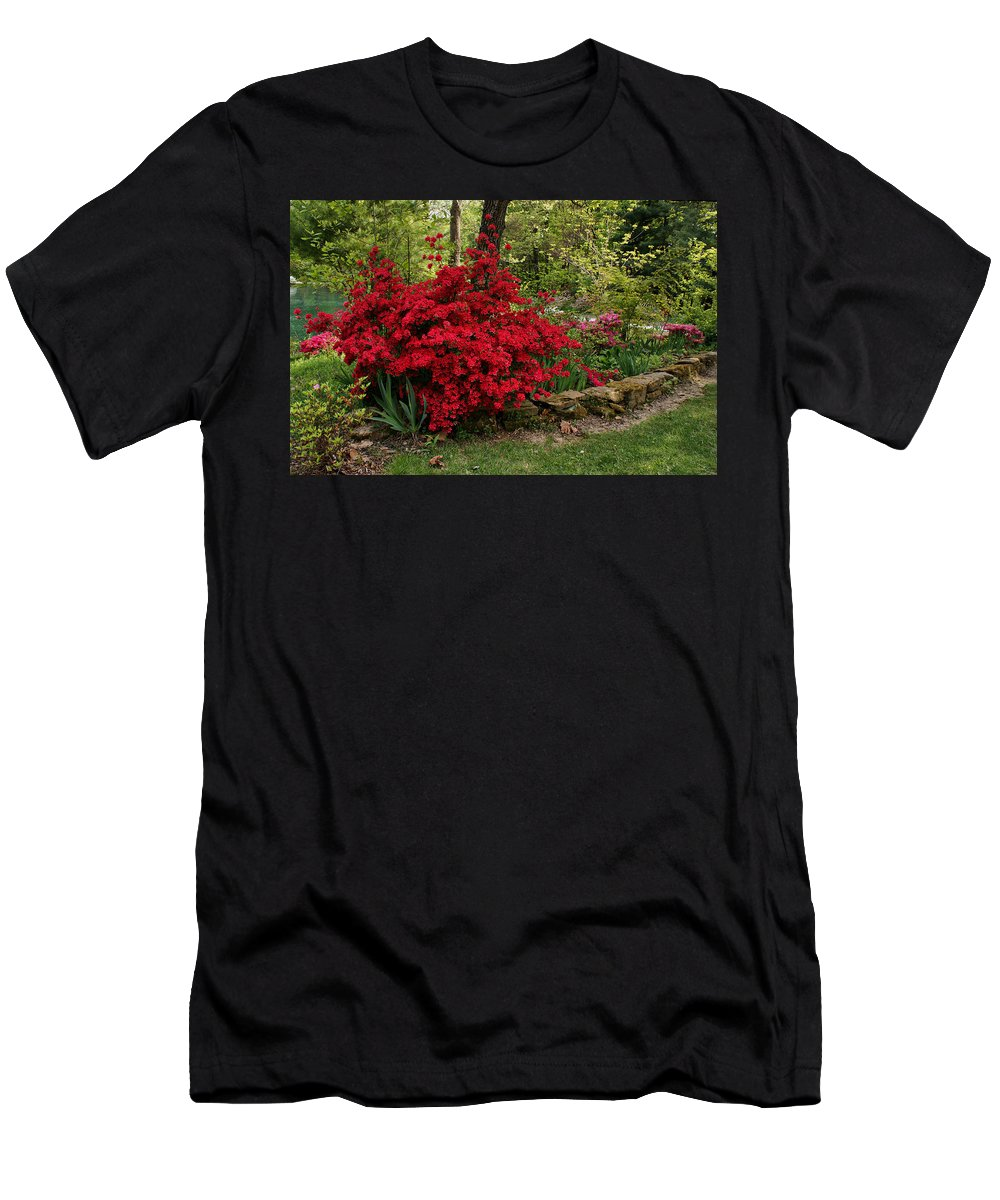 Azalea Men's T-Shirt (Athletic Fit) featuring the photograph Spring Time by Sandy Keeton