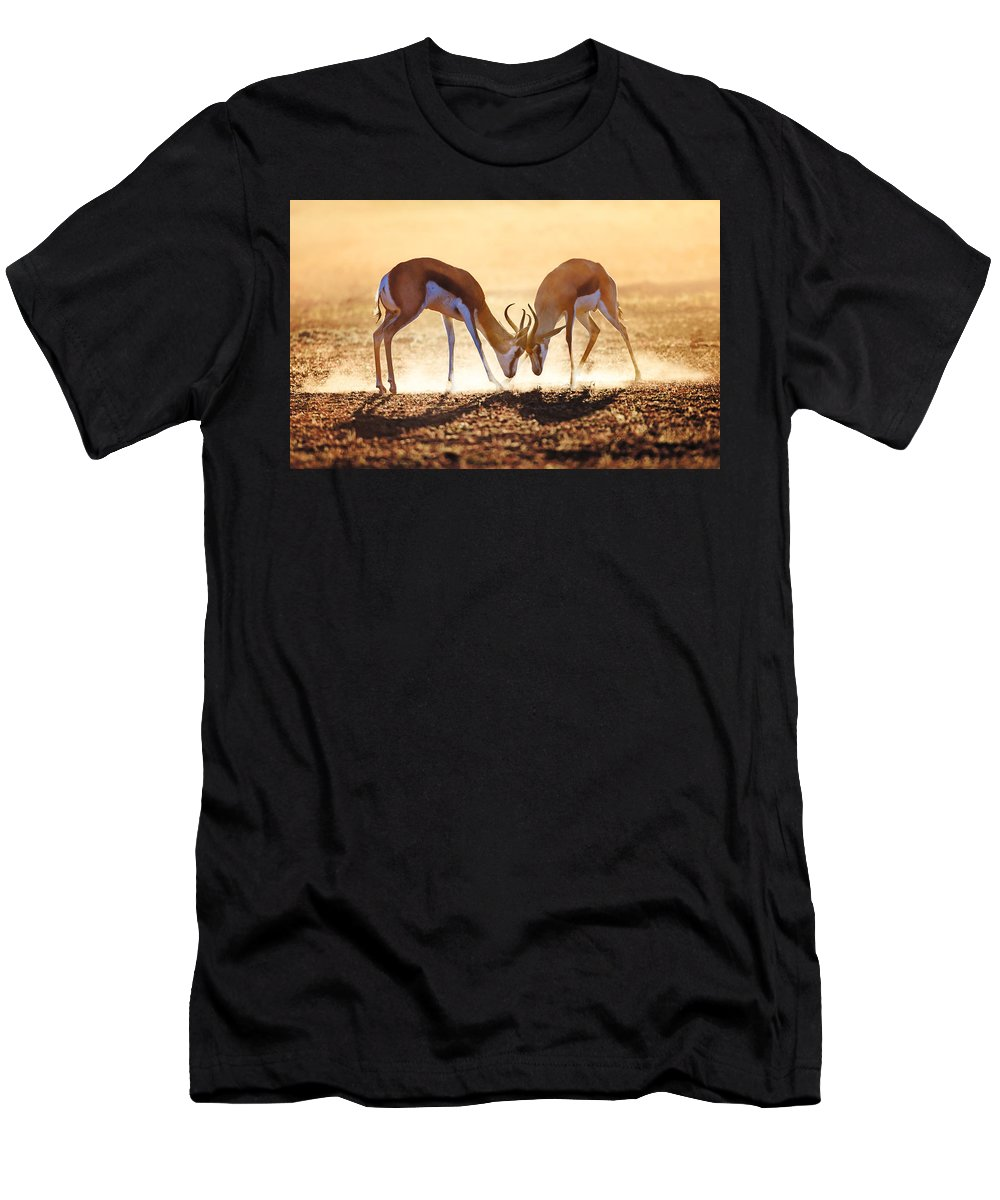 Springbok Men's T-Shirt (Athletic Fit) featuring the photograph Springbok Dual In Dust by Johan Swanepoel
