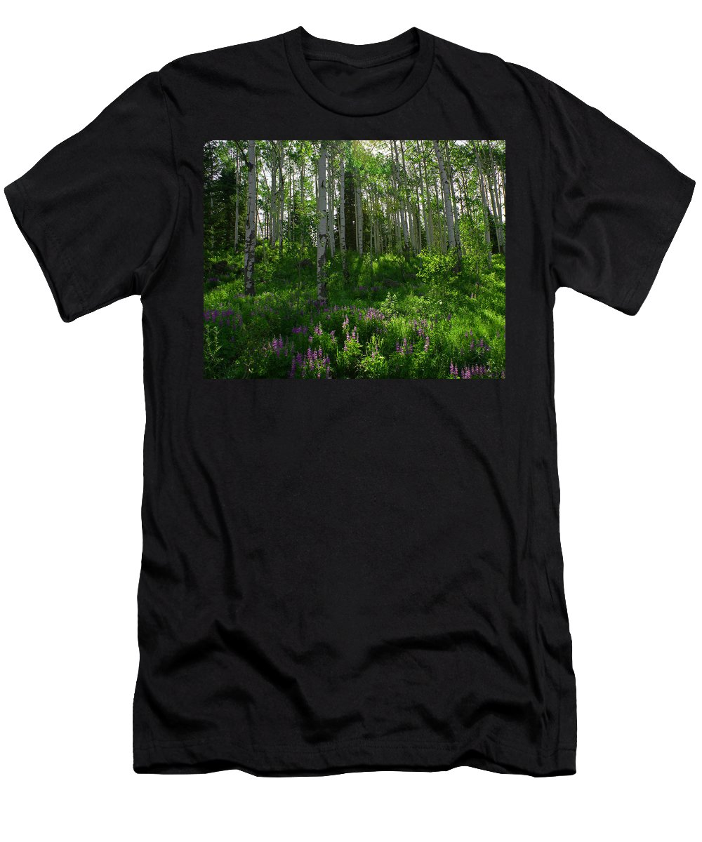 Aspens Men's T-Shirt (Athletic Fit) featuring the photograph Springtime On The Grand Mesa by Ernie Echols