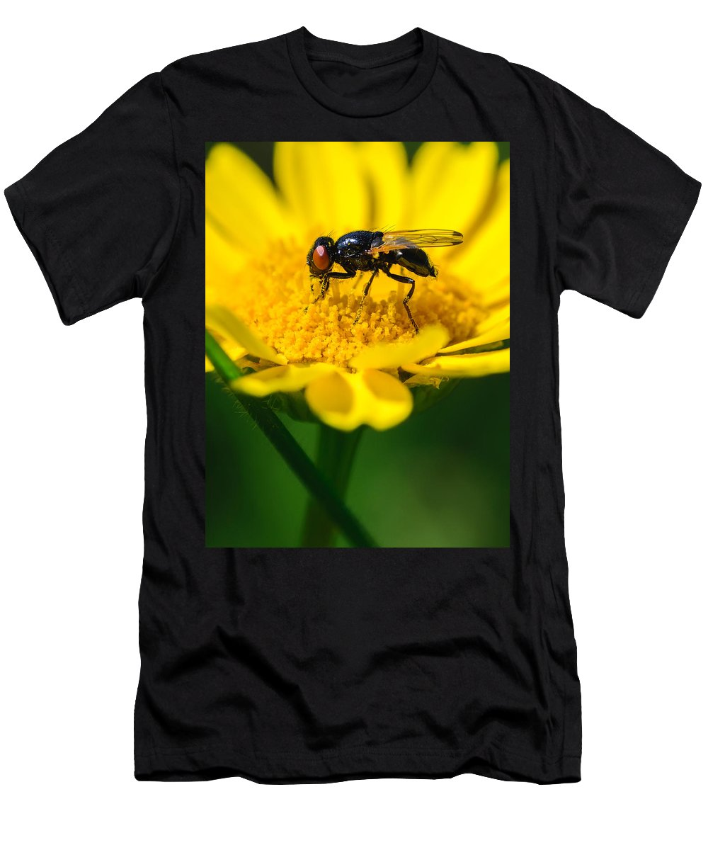 Daisy Men's T-Shirt (Athletic Fit) featuring the photograph Sticky Fingers by Marco Oliveira
