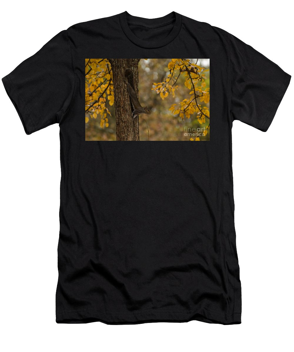 Animal Men's T-Shirt (Athletic Fit) featuring the photograph Stretching Out by Donna Brown