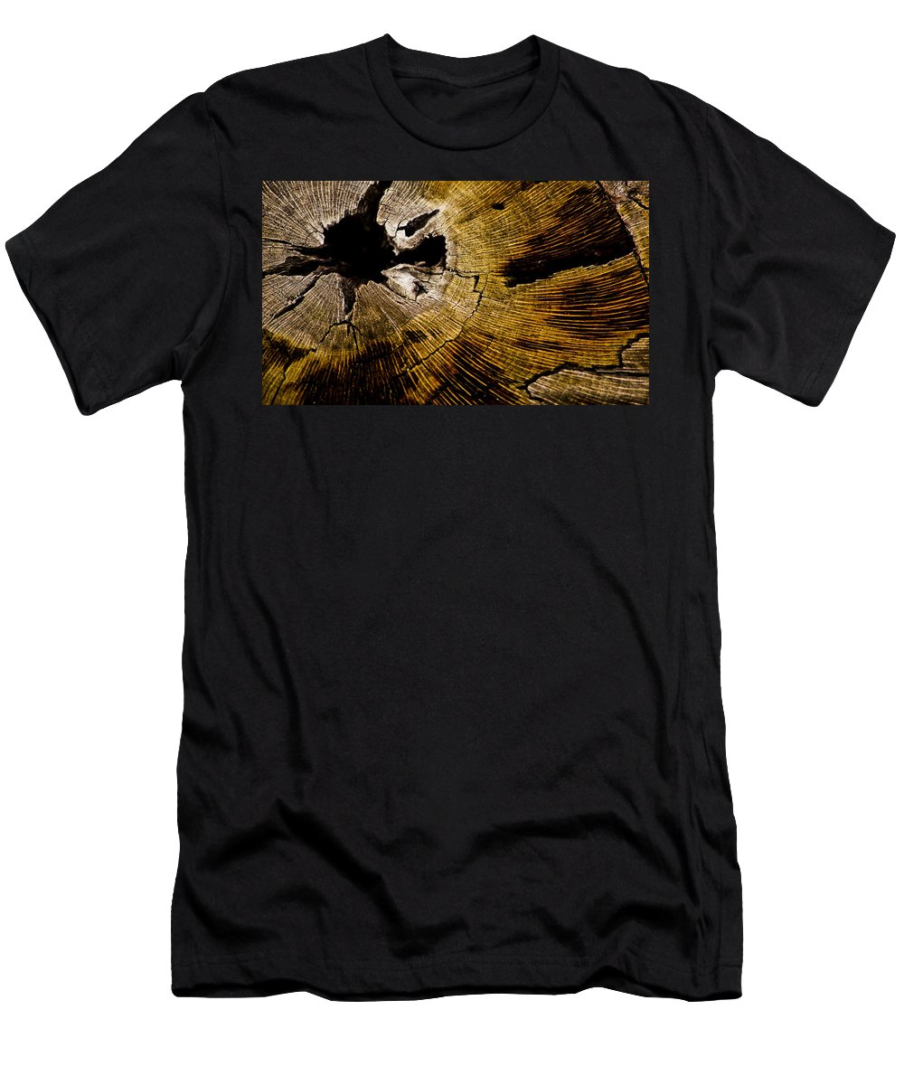 Tree Rings Men's T-Shirt (Athletic Fit) featuring the photograph Stump Art by Patrick Moore
