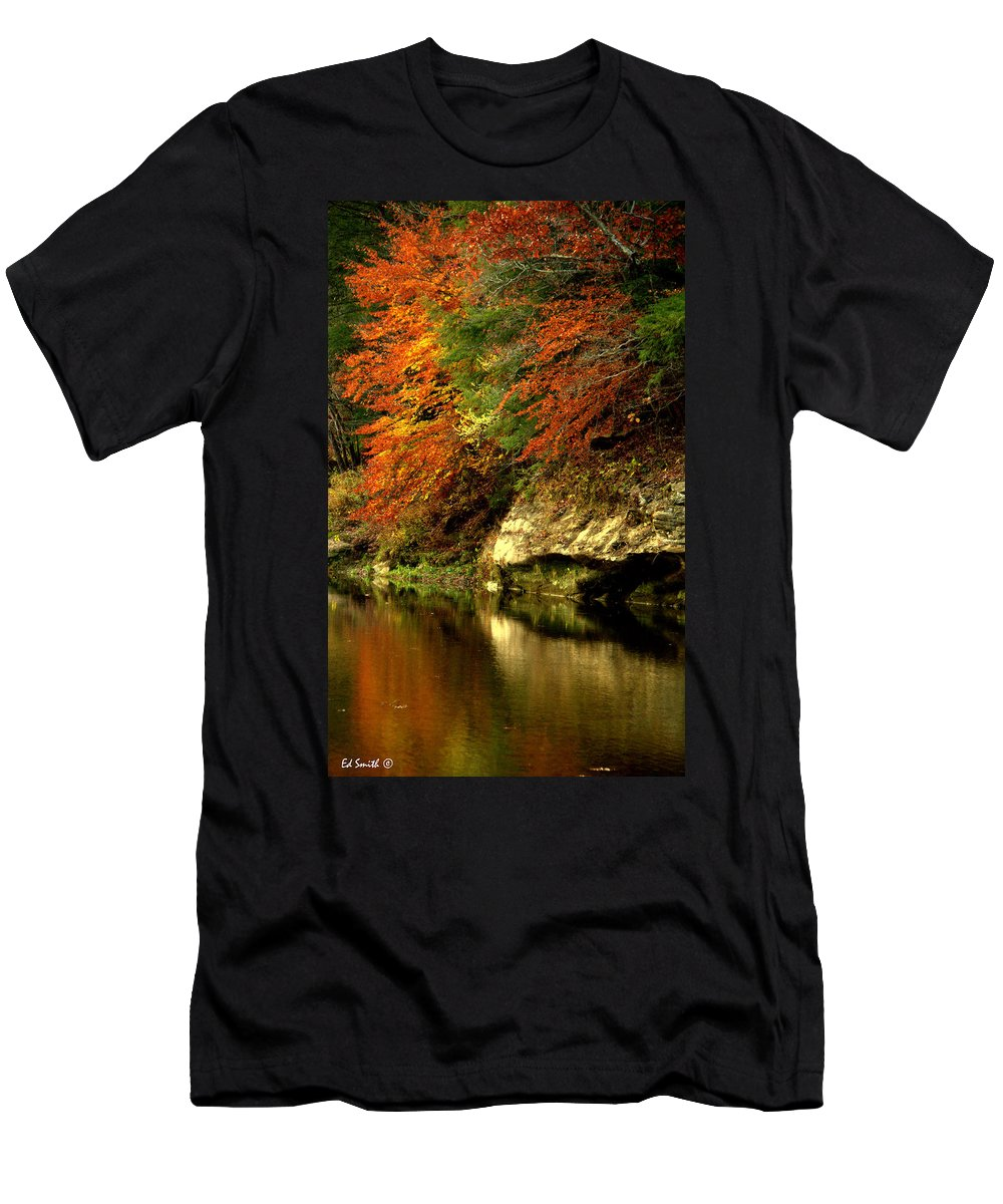Foliage Men's T-Shirt (Athletic Fit) featuring the photograph Sugar Creek by Ed Smith