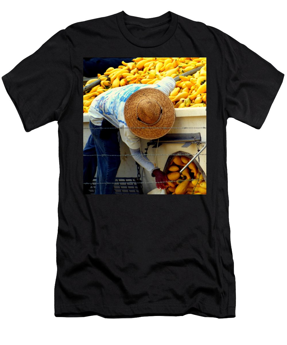 Squash Men's T-Shirt (Athletic Fit) featuring the photograph Summer Squash by Karen Wiles