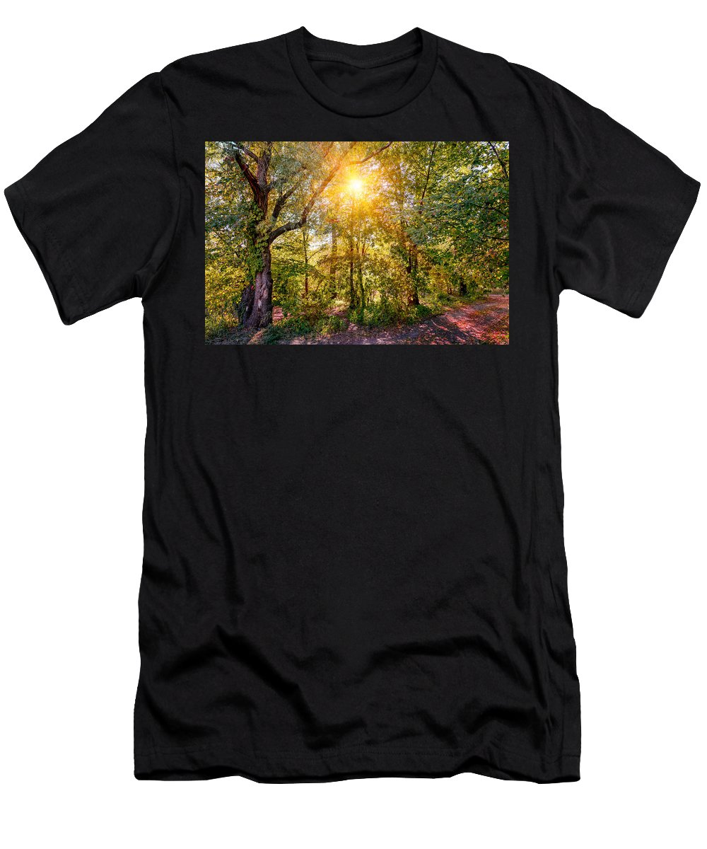 Kiev Men's T-Shirt (Athletic Fit) featuring the photograph Sun In The Autumn Forest by Alain De Maximy