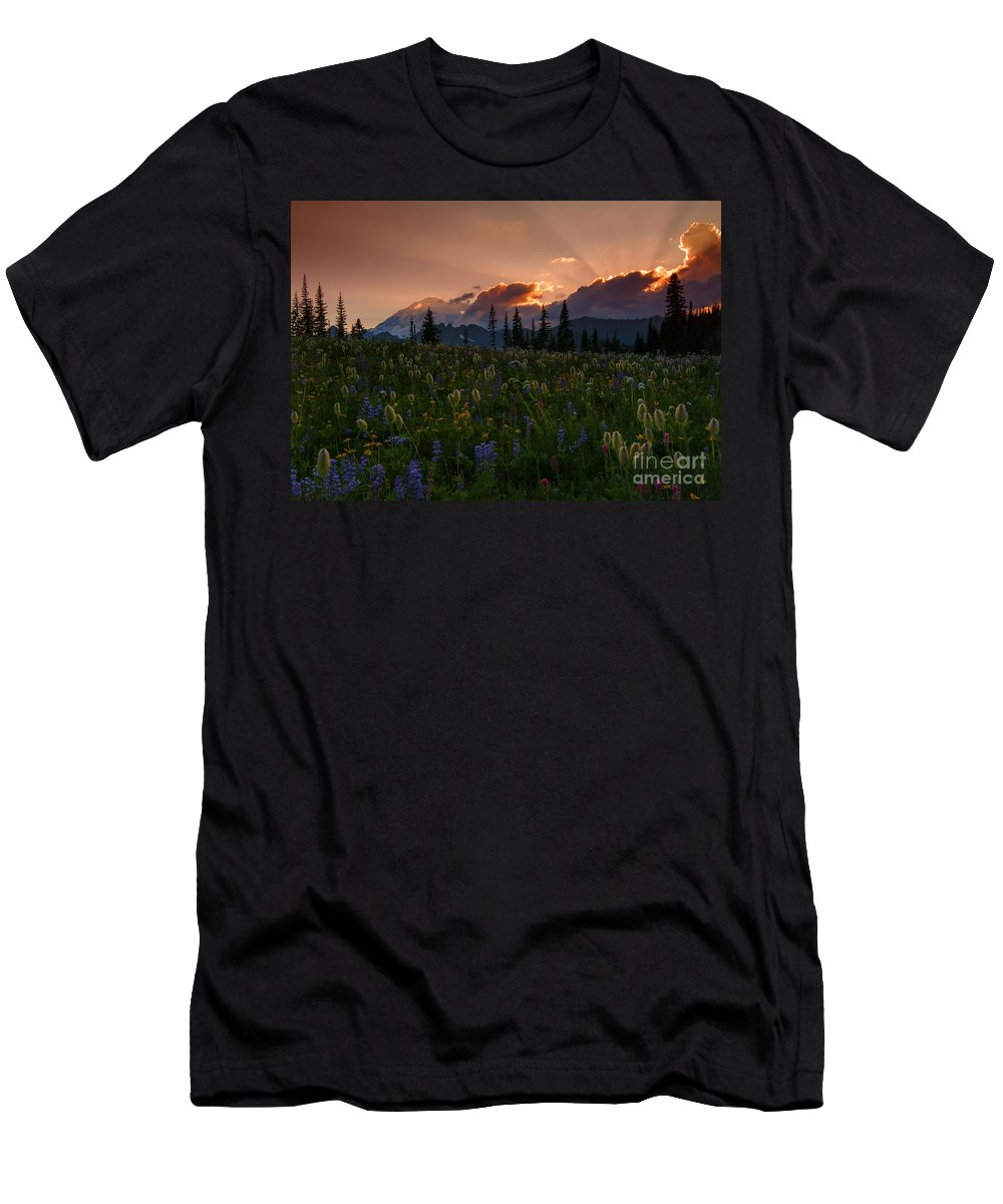 Mt. Rainier Men's T-Shirt (Athletic Fit) featuring the photograph Sunbeam Garden by Mike Dawson