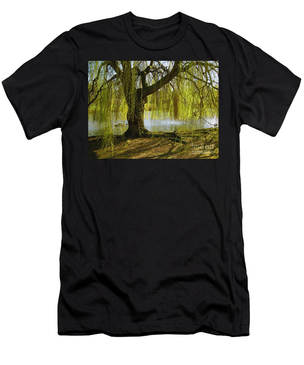 Tree Men's T-Shirt (Athletic Fit) featuring the photograph Sunday In The Park by Madeline Ellis