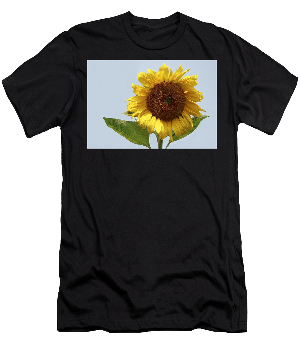 Flower Men's T-Shirt (Athletic Fit) featuring the photograph Sunflower by Marcia Colelli