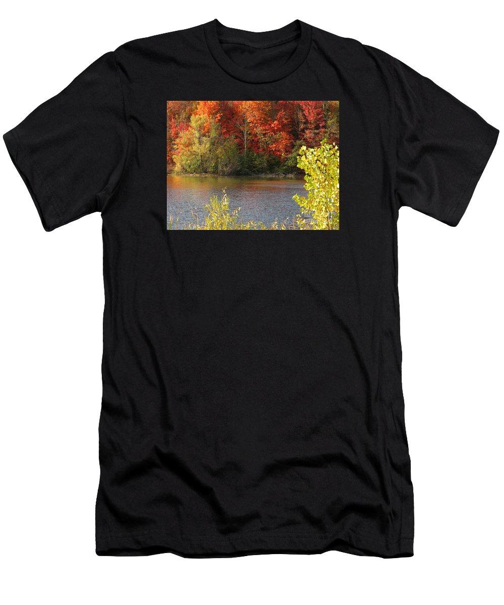 Autumn T-Shirt featuring the photograph Sunlit Autumn by Ann Horn