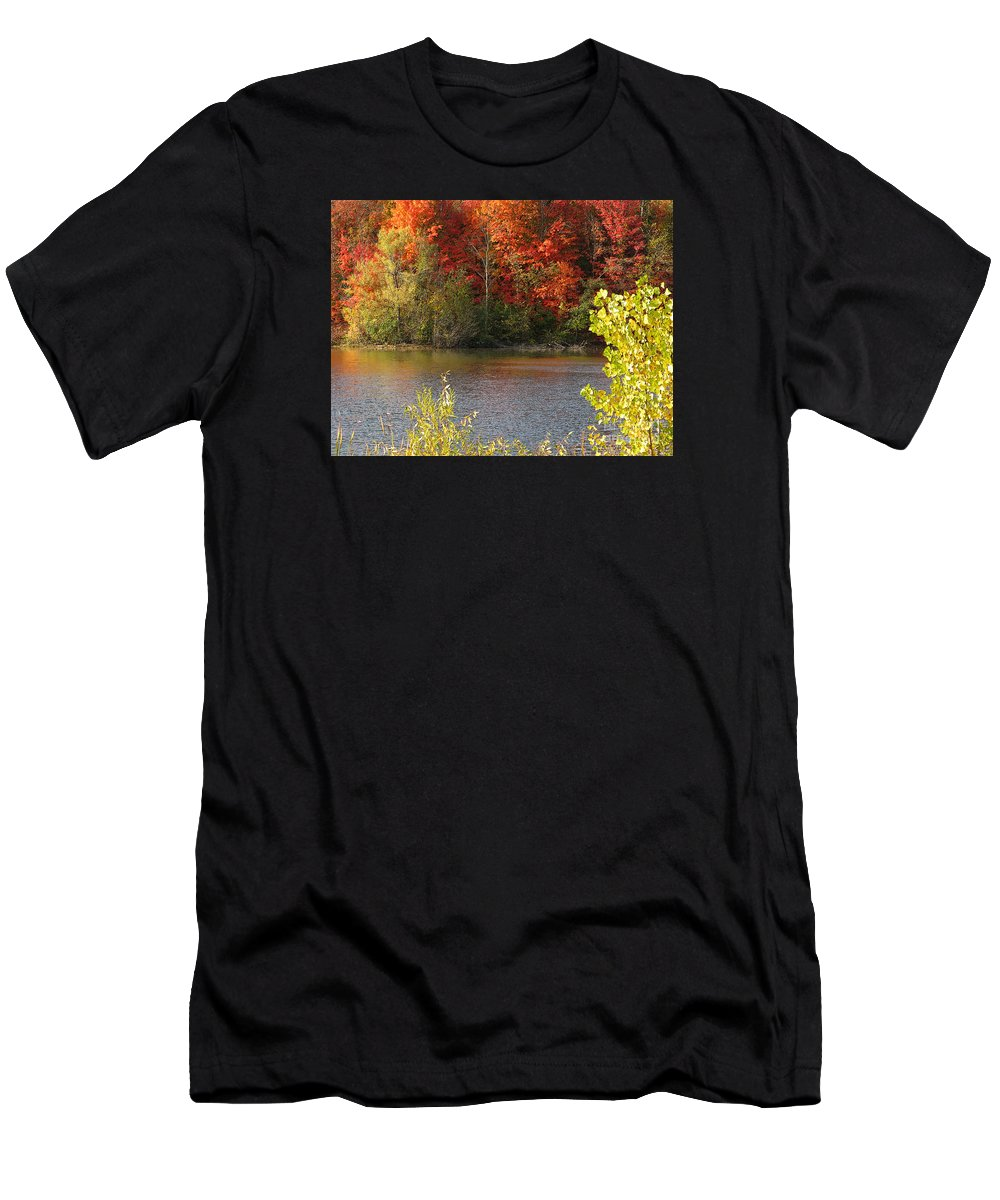 Autumn Men's T-Shirt (Athletic Fit) featuring the photograph Sunlit Autumn by Ann Horn