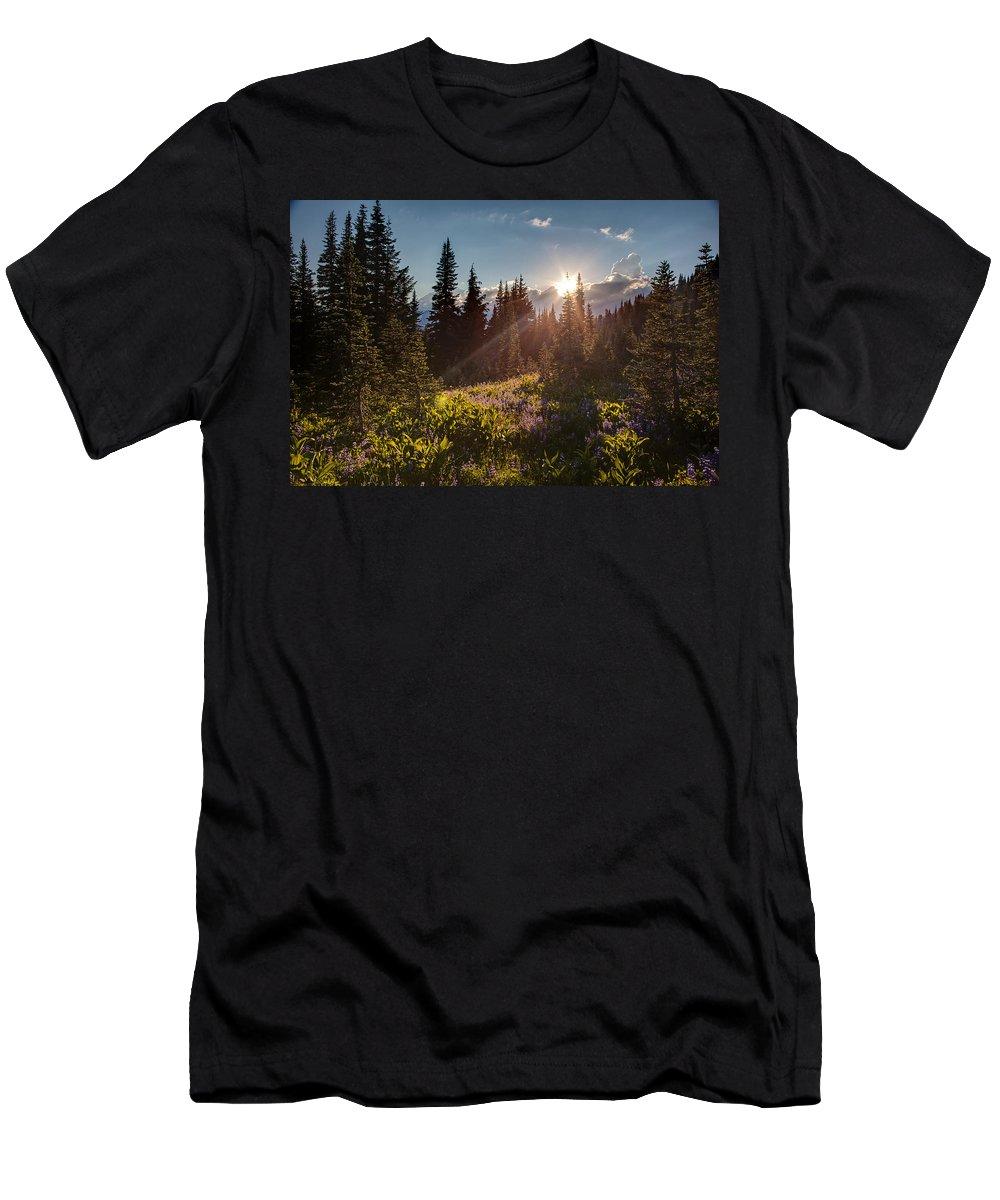 Rainier Men's T-Shirt (Athletic Fit) featuring the photograph Sunlit Flower Meadows by Mike Reid