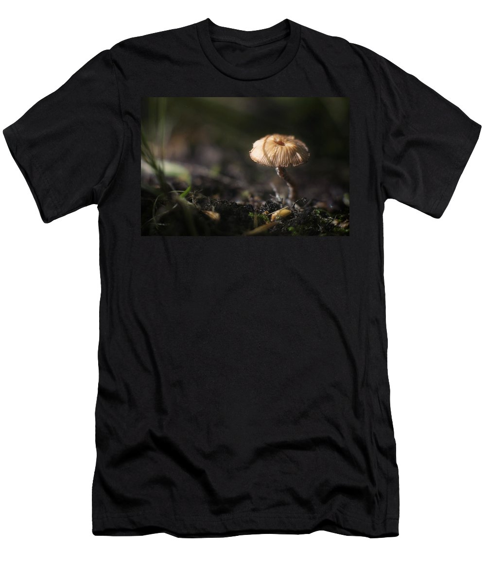 Mushroom Men's T-Shirt (Athletic Fit) featuring the photograph Sunlit Mushroom by Scott Norris