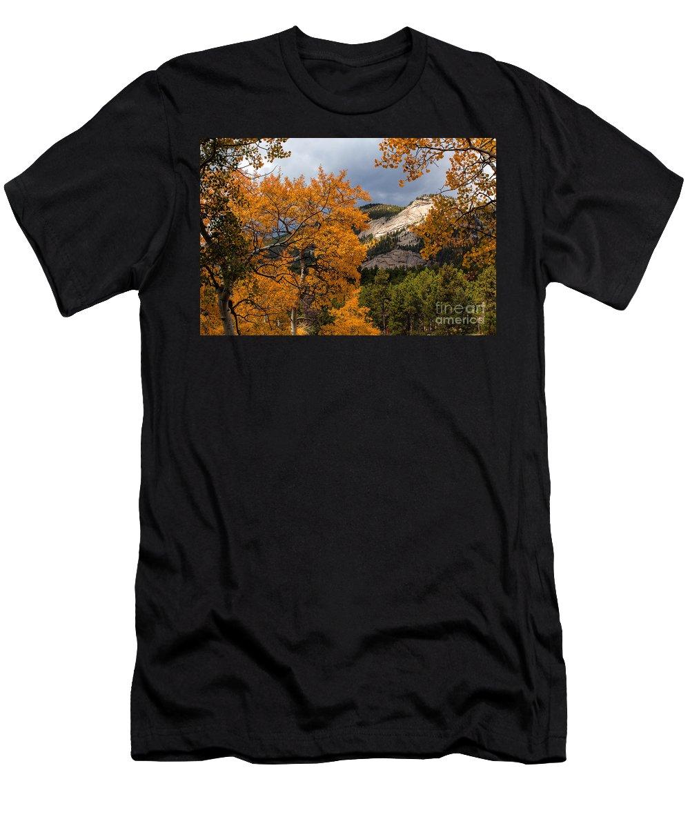 Autumn Colors Men's T-Shirt (Athletic Fit) featuring the photograph Sunlit Window by Jim Garrison