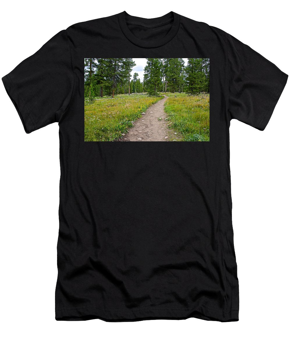 Swan Lake Trail In Grand Teton National Park Men's T-Shirt (Athletic Fit) featuring the photograph Swan Lake Trail In Grand Teton National Park-wyoming by Ruth Hager