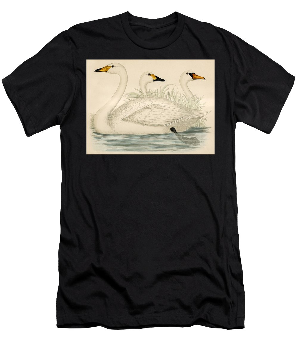 Swans Men's T-Shirt (Athletic Fit) featuring the painting Swans by Beverley R Morris
