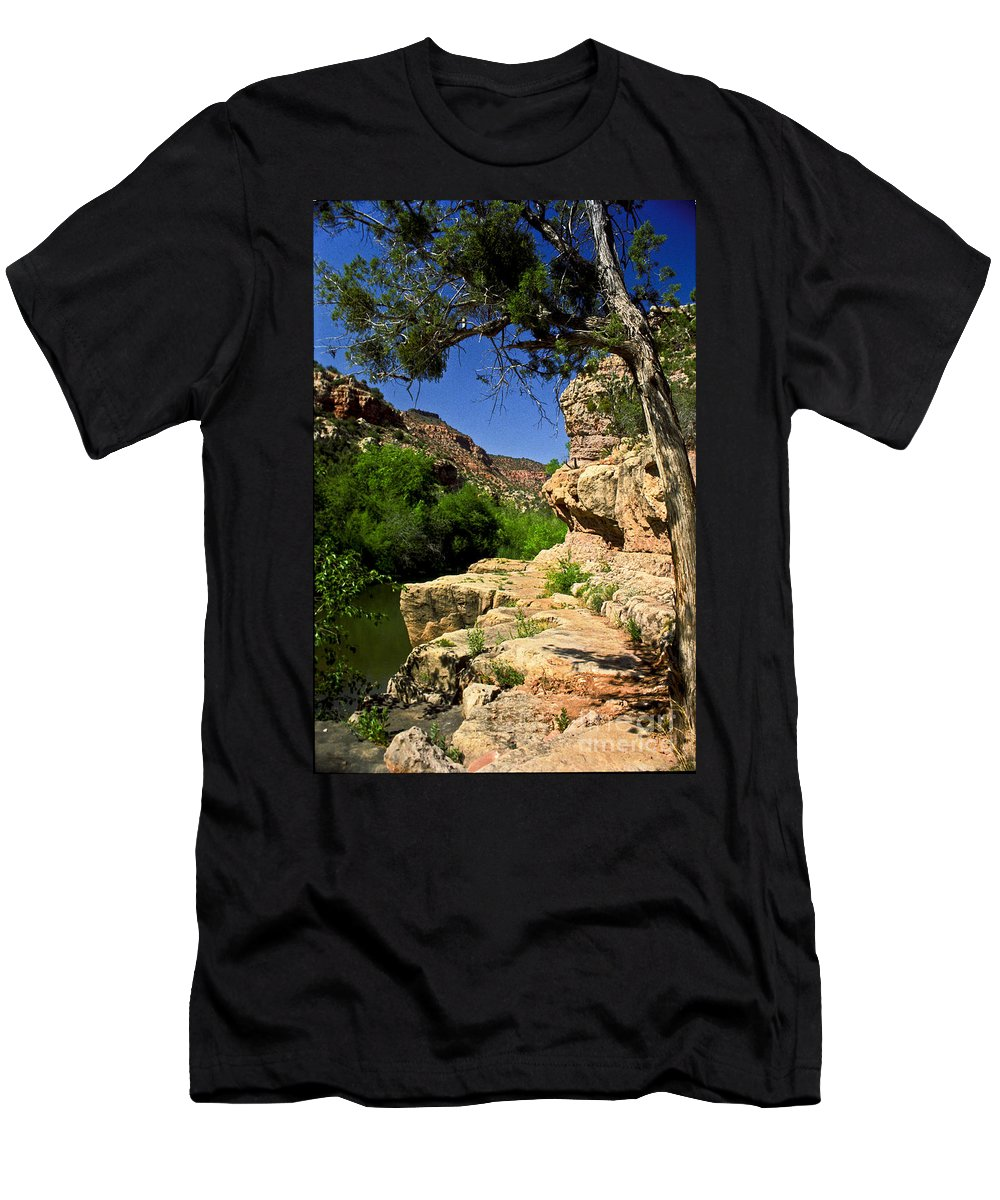 Arizona Men's T-Shirt (Athletic Fit) featuring the photograph Sycamore Canyon by Kathy McClure