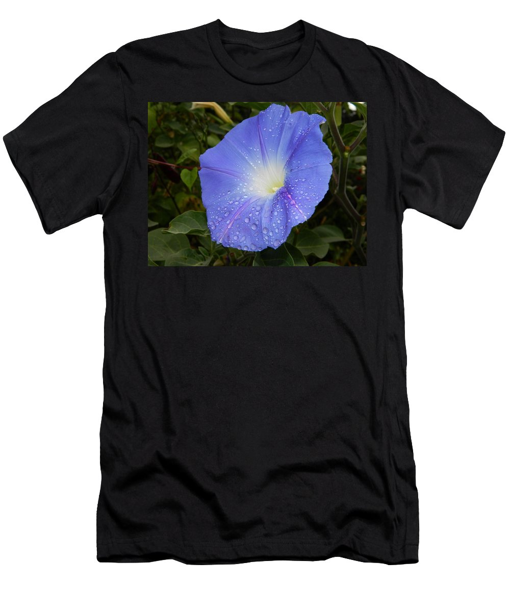 Morning Glory Men's T-Shirt (Athletic Fit) featuring the photograph Symphony by Terri Waselchuk