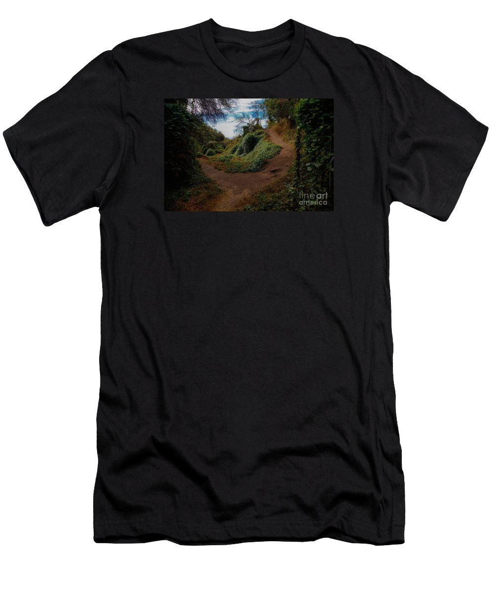 Los Liones Men's T-Shirt (Athletic Fit) featuring the photograph Take A Walk by James Souter