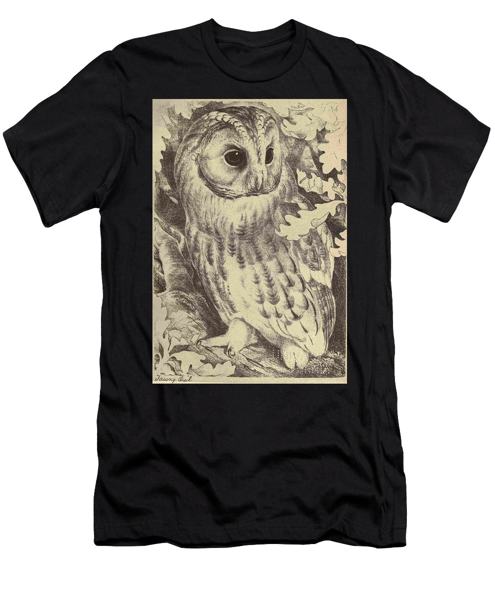 Tawny Men's T-Shirt (Athletic Fit) featuring the drawing Tawny Owl by Unknown