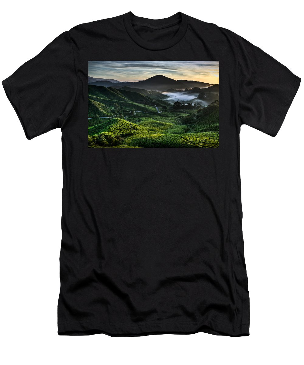 Tea Plantation Men's T-Shirt (Athletic Fit) featuring the photograph Tea Plantation At Dawn by Dave Bowman