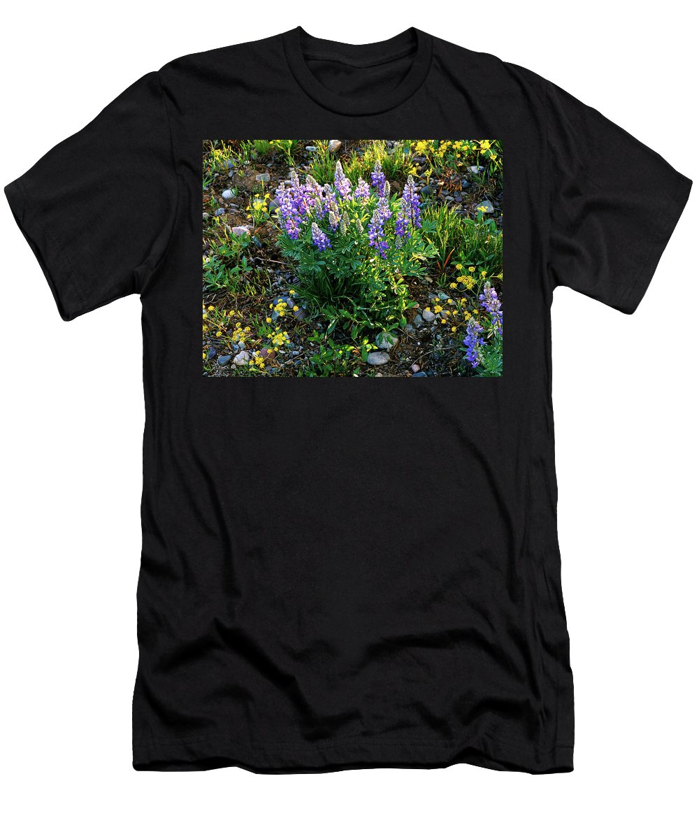 Wyoming Men's T-Shirt (Athletic Fit) featuring the photograph Teton Widflowers by Ed Riche