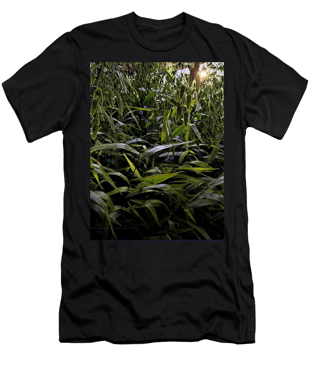 Ladybird Johnson Wildflower Center Men's T-Shirt (Athletic Fit) featuring the photograph Texas Grasses by Greg Reed