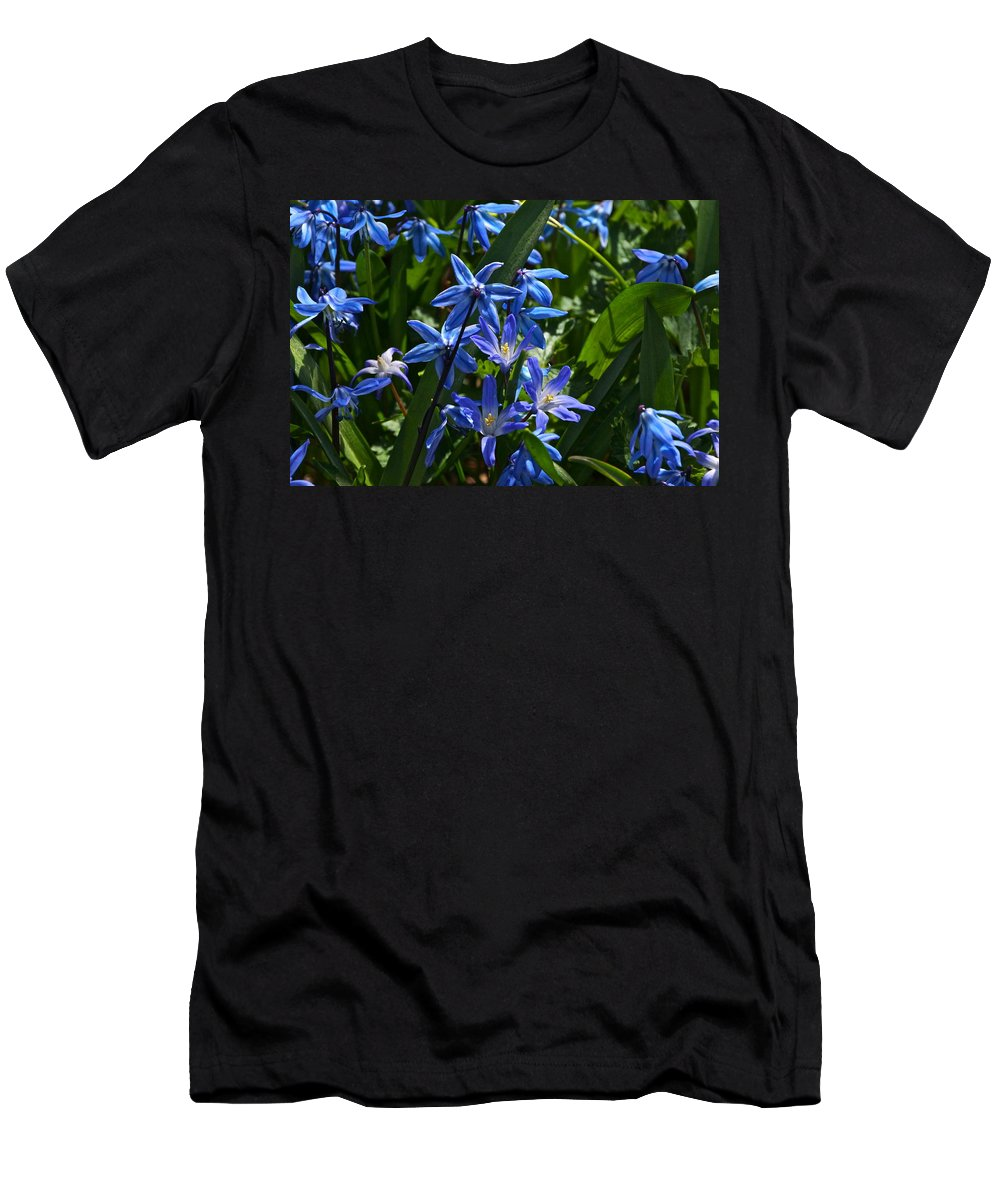 Scilla And Chionodoxa Flowers Men's T-Shirt (Athletic Fit) featuring the photograph Thank You by Byron Varvarigos
