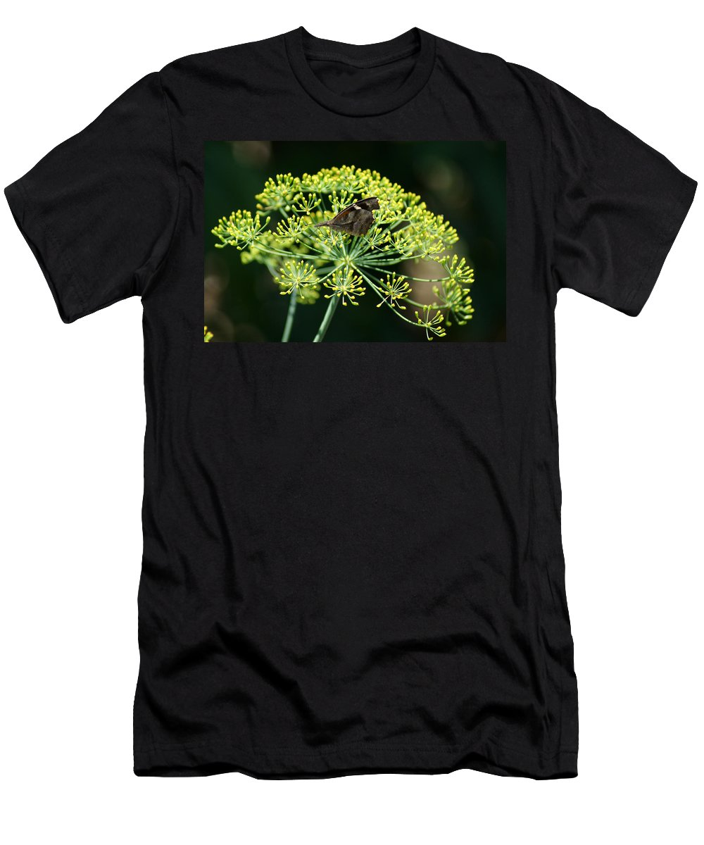 The American Snout Butterfly Men's T-Shirt (Athletic Fit) featuring the photograph The American Snout Butterfly by Kim Pate