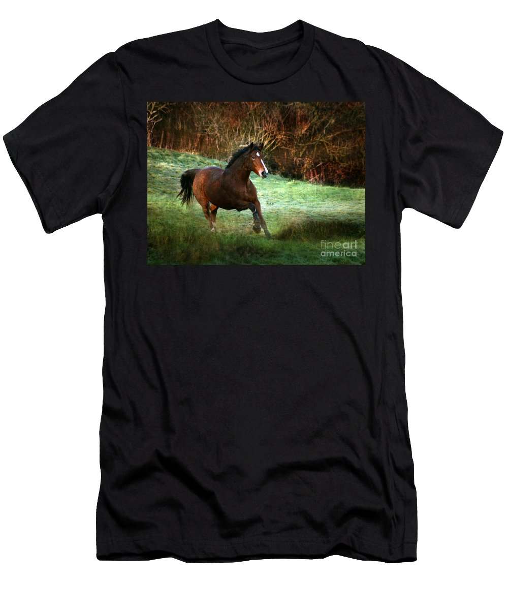Autumn Men's T-Shirt (Athletic Fit) featuring the photograph The Autumn by Angel Ciesniarska