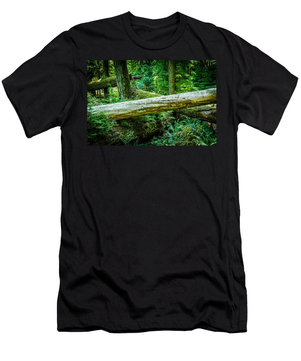 Old Growth Forest Men's T-Shirt (Athletic Fit) featuring the photograph The Fallen Collection 12 by Roxy Hurtubise