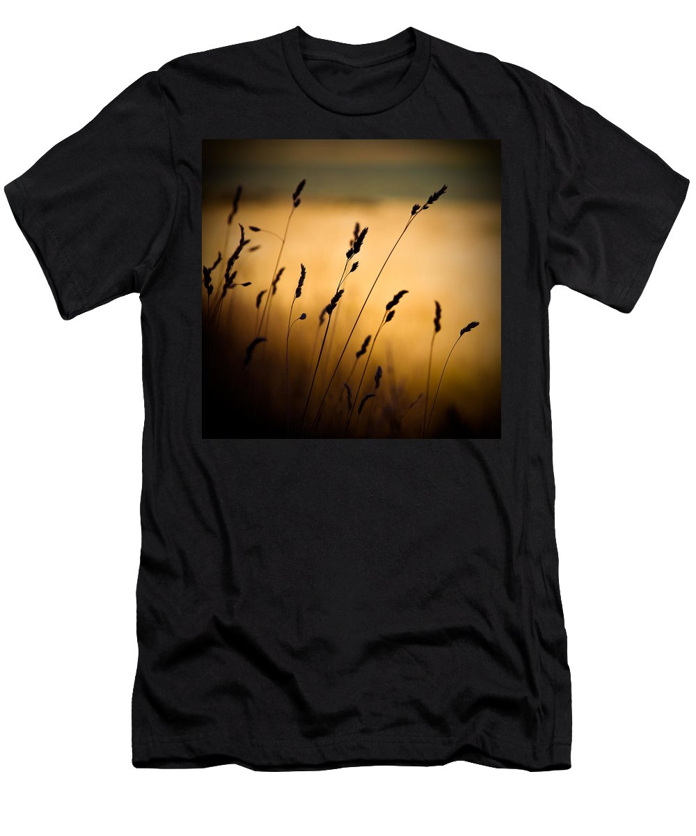 Filed At Sunset Men's T-Shirt (Athletic Fit) featuring the photograph The Field by Dave Bowman