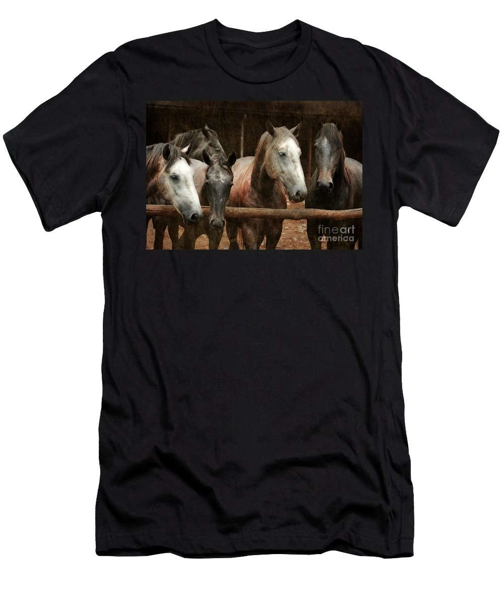 Horse Men's T-Shirt (Athletic Fit) featuring the photograph The Horses by Angel Ciesniarska