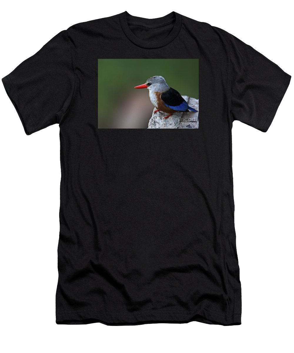 Festblues Men's T-Shirt (Athletic Fit) featuring the photograph The King Of Fishing... by Nina Stavlund