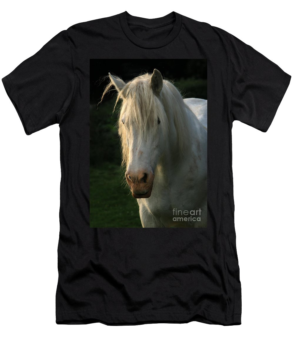Unicorn Men's T-Shirt (Athletic Fit) featuring the photograph The Light In The Mane by Angel Tarantella