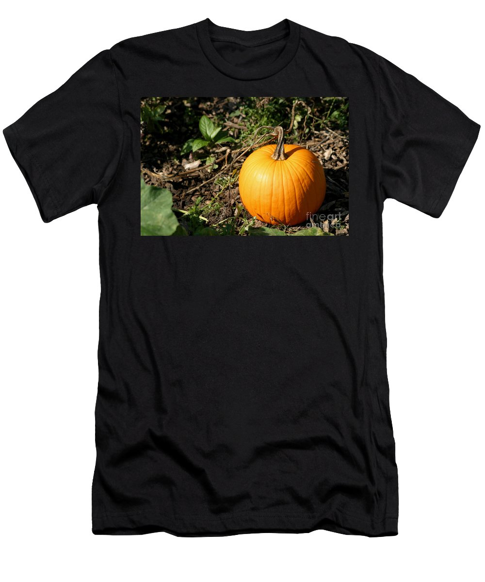 Pumpkin Men's T-Shirt (Athletic Fit) featuring the photograph The Perfect Pumpkin In The Patch by Living Color Photography Lorraine Lynch
