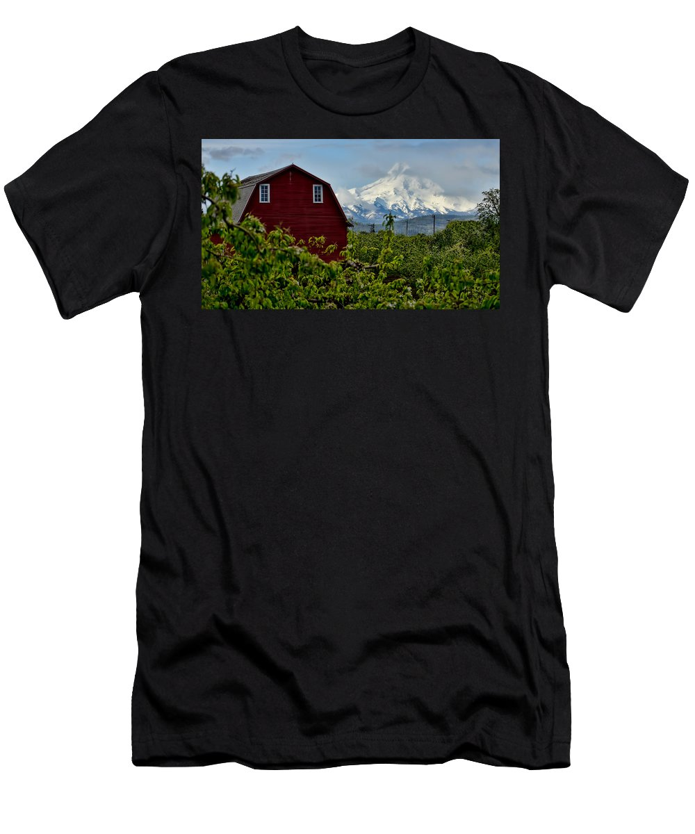 Red Barn Men's T-Shirt (Athletic Fit) featuring the photograph The Red Barn And Mt. Hood by Don Schwartz