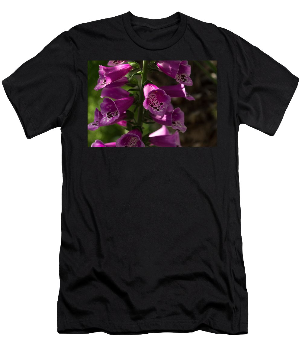 Splendor Men's T-Shirt (Athletic Fit) featuring the photograph The Splendor Of Foxgloves by Georgia Mizuleva